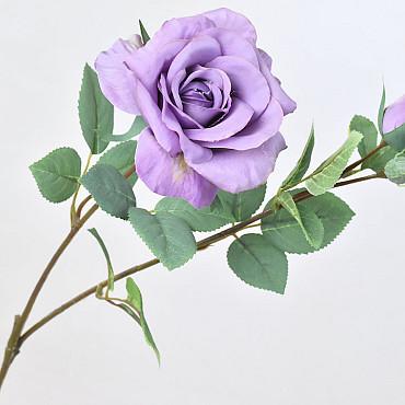 Tintagel Spray Rose Lavender 63cm