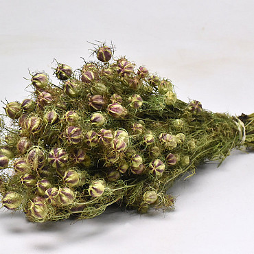 Bouquet Nigella 45cm