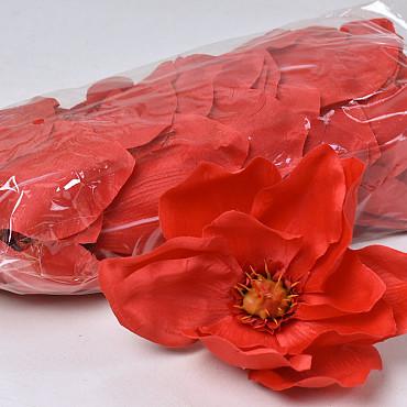 Magnolia D17cm Red