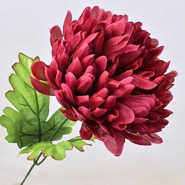 Chrysanth 16cm Bordeaux
