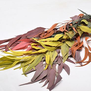 Eucalyptus 65cm Fall Mix