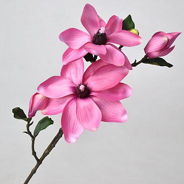 Magnoliatak 75cm Roze