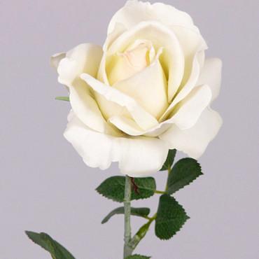 Rose 37cm Cream