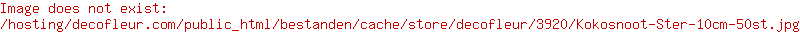Kokos Star Natürlich 10cm 50Stck