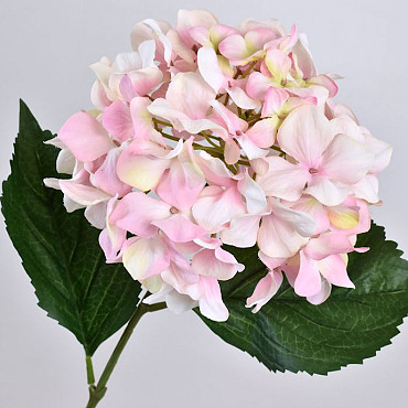 Hortensia 68cm Roze-Wit