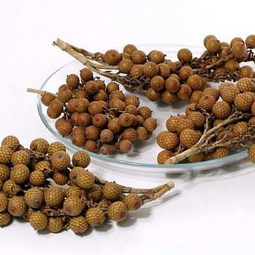 Rattan Fruit 500grams
