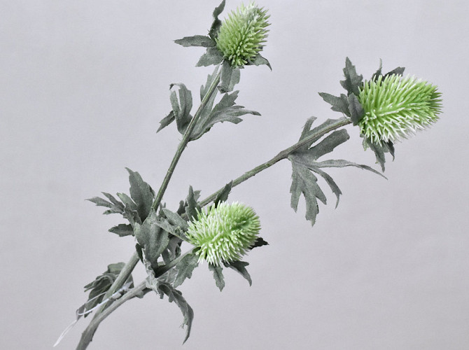 Thistle Spray Green 78cm