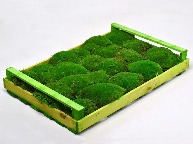 Bolmos Groen (krat 38x58cm)